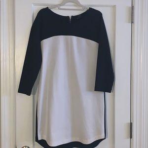 Club Monaco Sweatshirt Dress